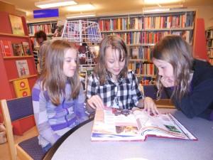 amanda bibliotek