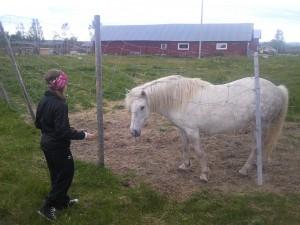amanda och häst